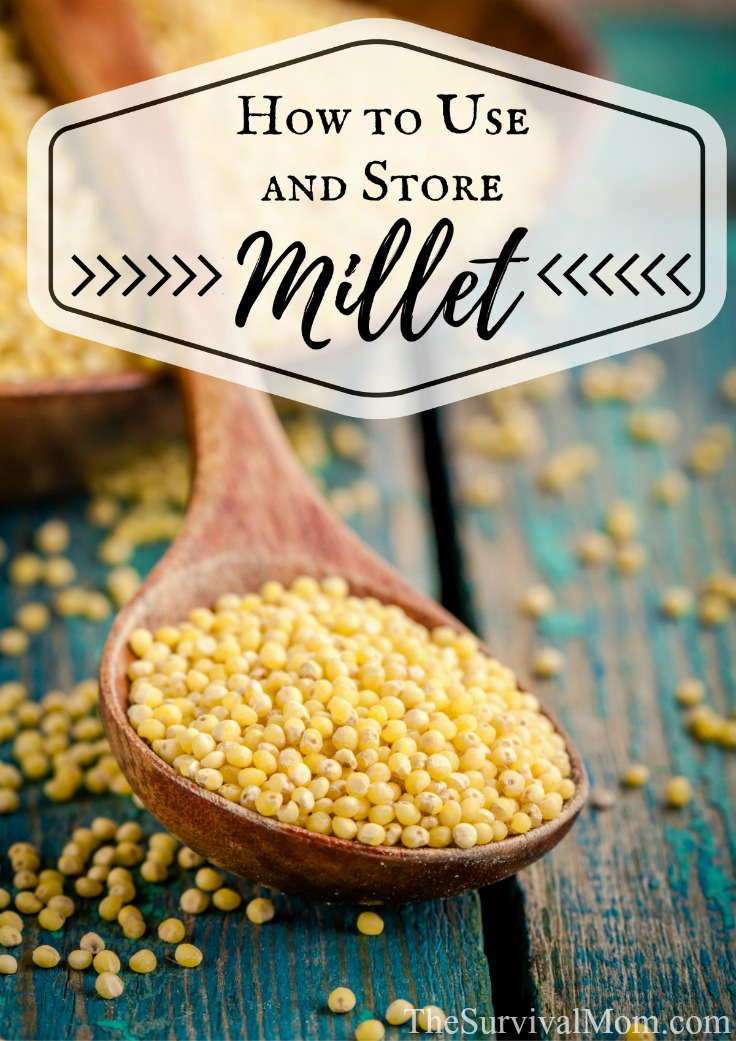 How To Use And Store Millet Thrive Life With The
